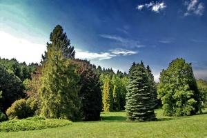 Agostyani-arboretum-Tata