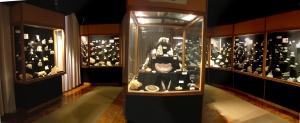 Bakonyi-termeszettudomanyi-muzeum-Zirc