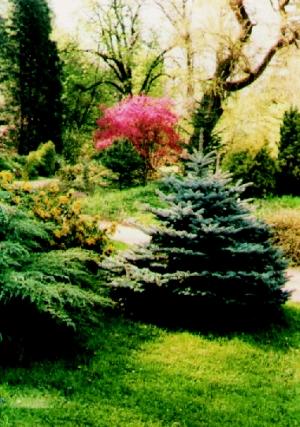 Arboretum-balaton-felvideki-nemzeti-park-igazgatosag-Zirc