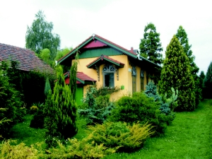 Szabadkai-arboretum-Kadarkut