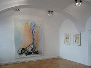 Csikasz-galeria-Veszprem